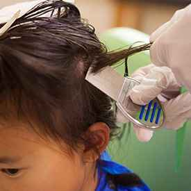 Comb out treatment for head lice